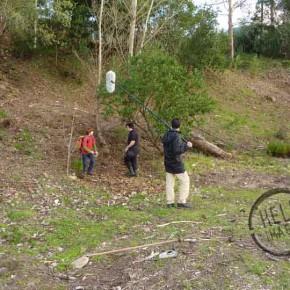 FU-A-Floresta-04-290x290