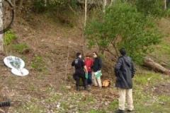 FU-A-Floresta-01-290x290