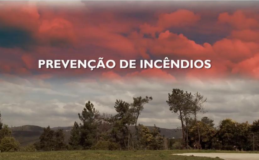 """FLORESTA UNIDA – """"PREVENÇÃO DE INCÊNDIOS"""""""