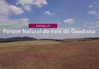 Natural.pt  – Montado